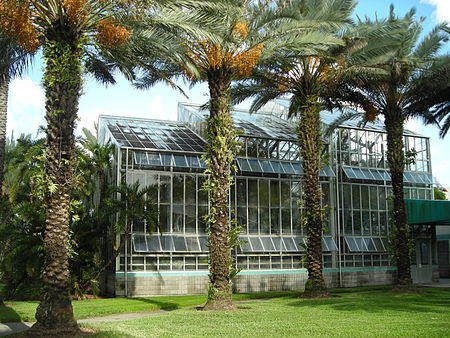 The Wertheim Conservatory houses many rare species of plants and foliage. Fiuarboretum.JPG