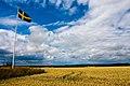 Flag countryside (3707792202).jpg