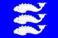 Flag of Vasilevsky (St Petersburg).png