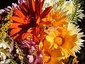 Flores (12900778).jpg