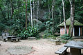 Floresta da Tijuca 35.jpg