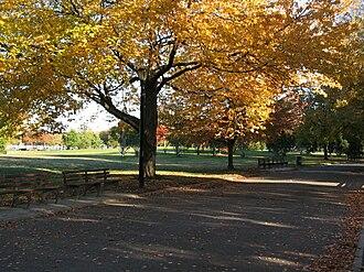 Flushing Meadows–Corona Park - The park in fall