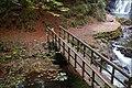 Footbridge, Glenoe glen (2) - geograph.org.uk - 559421.jpg