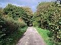 Footpath Near Teddesley - geograph.org.uk - 270526.jpg