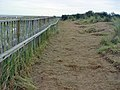 Footpath at Donna Nook - geograph.org.uk - 845233.jpg