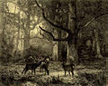 Foret de fontainbleau about 1850 by Carl Bodmer.jpg