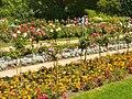 Forst-Rosengarten - Hochstammgarten (Rose Garden - Standard Roses) - geo.hlipp.de - 38967.jpg