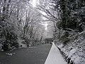 Frozen Grand Union Canal - geograph.org.uk - 1889875.jpg
