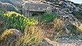 Güneyli Karanlıkdere Koyu - panoramio (4).jpg