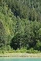 G'psgolox Pole - panoramio.jpg