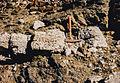 Gabbro vein in dark peridotite, Corsica.jpg