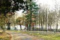 Garncarski Brod, szkolka lesna.JPG