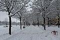 Geneve Sous la neige - 2013 - panoramio (14).jpg