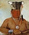 George Catlin - Sháw-da-mon-nee, There He Goes, a Brave - 1985.66.115 - Smithsonian American Art Museum.jpg