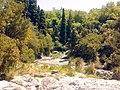 Gimello - creek - 04.jpg