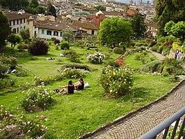 Giardino delle rose (Firenze)