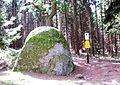 Glockenstein Stecklenberg.jpg