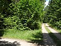 Gmina Giby, Poland - panoramio (106).jpg