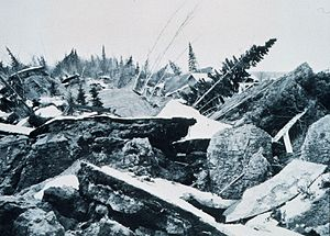 1964 Alaska earthquake - The largest landslide in Anchorage occurred along Knik Arm between Point Woronzof and Fish Creek, causing substantial damage to numerous homes in the Turnagain-By-The-Sea subdivision.