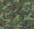 "Green-dominant ""lowland"" ERDL camouflage pattern swatch.jpg"