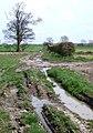 Green Lane, Swine - geograph.org.uk - 775430.jpg
