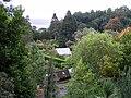 Greenhouse in Arduaine Garden - geograph.org.uk - 1549939.jpg