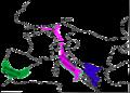 Grenouilles vertes répartition eur1.png