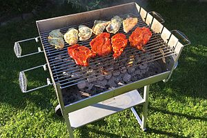 Grilling - Steaks and chicken breasts being grilled over charcoal