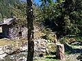 Gufo di Campovecchio - panoramio.jpg