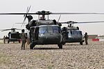 Hand Selected by Task Force Spartan Commander for Exceptional Service, Reserve MP Company Ends Mission in Iraq With Full-scale Air Assault DVIDS84896.jpg