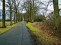 Harderwijk - Tonsel - Weisteeg - View WNW I.jpg