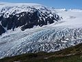 Harding Icefield Trail Exit Glacier.jpg