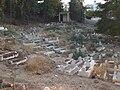Hashmiyya Cemetery.jpg
