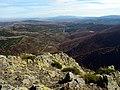 Hayedo de Tejera Negra (4064400333).jpg