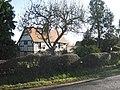 Hedge and apple tree, Norton Green Farm - geograph.org.uk - 2192285.jpg