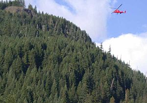 Willamette National Forest - Helicopter carrying timber along the Breitenbush River in the Willamette National Forest