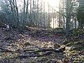 Henriksborgs ruin, den 18 december 2008, bild 27.JPG