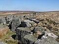 High Haddock Stones - geograph.org.uk - 1334515.jpg