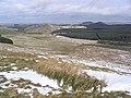 Hill farming countryside - geograph.org.uk - 370318.jpg