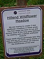 Hillend Meadow - geograph.org.uk - 861900.jpg