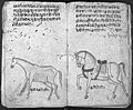 Hindi Manuscript 191, fols. 33 verso 34 rect Wellcome L0024226.jpg