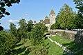Hirschgehege auf dem Lindenhof in Rapperswil, im Hintergrund das Schloss 2015-05-27 18-51-43.JPG