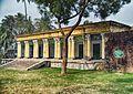 Honey Queen Building.jpg