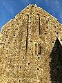 Hore Abbey, Caiseal, Éire - 45671471555.jpg