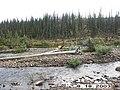 Hosford Creek Water Quality Testing, Yukon-Charley Rivers, 2003 2 (dbdb3ac6-f068-4a72-9abc-3a5d74332e6a).jpg