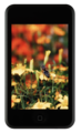 IPod Touch nobg.png