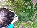 Ilha da Terceira (24878586467).jpg