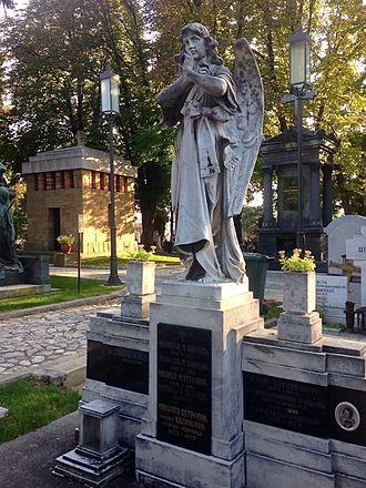 Vladan Radoman - Grave Beograd Serbia Grobjle 40 Novo Grobjle