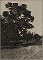 Imperial Valley settlers' crop manual (1911) (14782621355).jpg