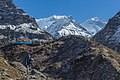 In way to Machhapuchre base camp!!.jpg